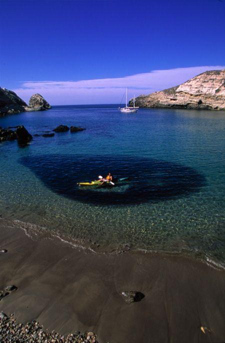 Kayaker above bait ball of fish santa cruz island for Santa cruz fishing spots