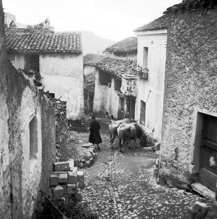 Sardinian village in 1950s #marcosolas #sardiniainthepast