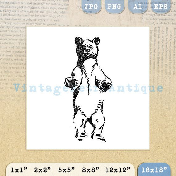 Printable Wild Bear Image Download by VintageRetroAntique on Etsy