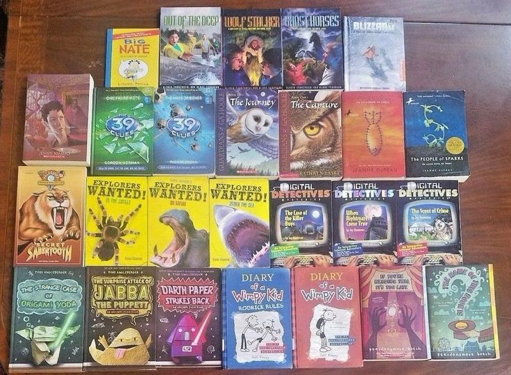 Lot 26 Diary of a Wimpy Kid Origami Yoda Boys Chapter Books High Interest