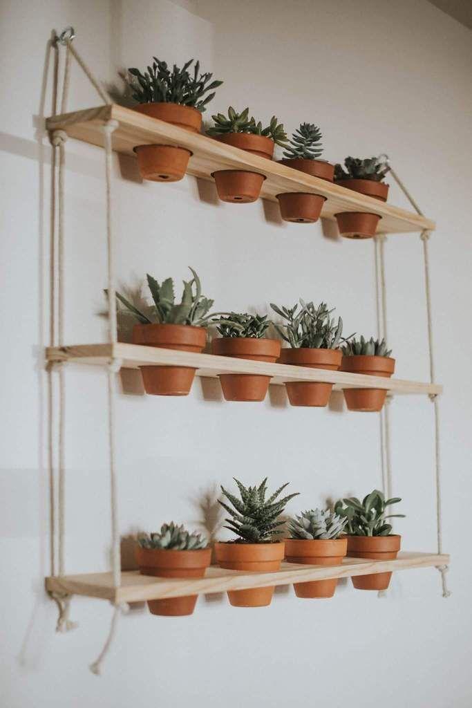 3 Tier Hanging Shelves Diykitchen Hanging Plants Indoor