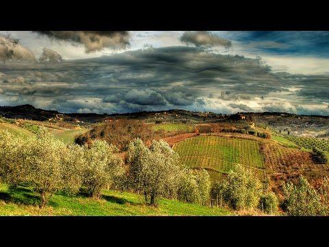 Tuscany nature Tuscany and its cities #raiexpo #youritaly #tuscany #italy #expo2015 #experience #visit #discover #culture #food #history #art #nature