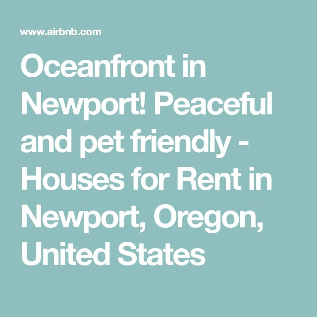 Oceanfront in Newport! Peaceful and pet friendly - Houses for Rent in Newport, Oregon, United States