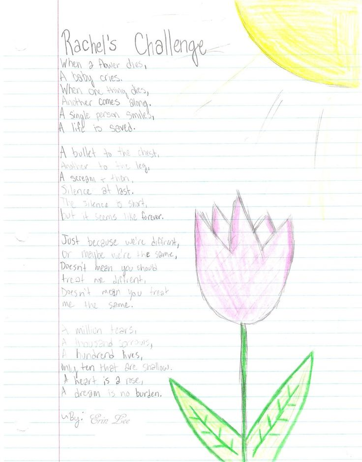 rachel scott chain reaction essay Rachel joy scott, in her final school essay before her death, wrote,  to speak with kindness and to start a chain reaction of kindness.