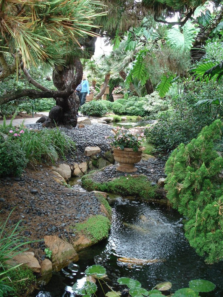 southern california garden ermergersh good things to do with a swale running through