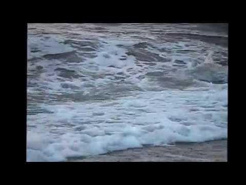 ENIGMA & SARAH BRIGHTMAN EDEN Remix Gregorian MP4