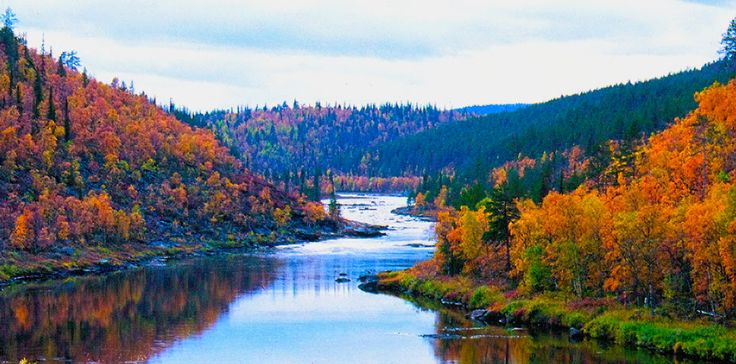 autumn fall pictures - Google Search
