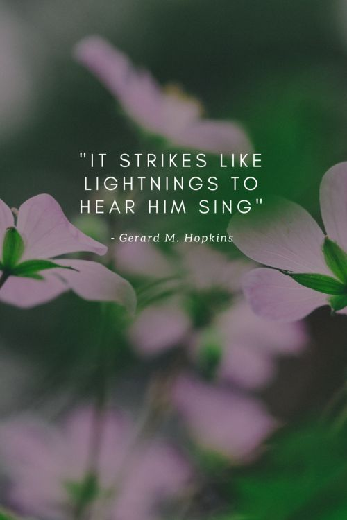 Spring by Gerard Manley Hopkins - it strikes like lightnings to hear him sing
