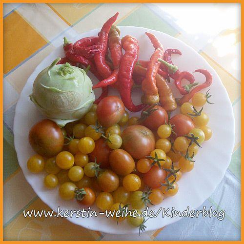Kohlrabi, Peperoni, Tomaten
