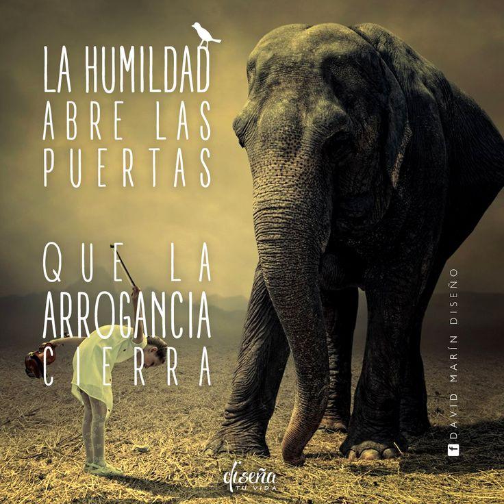 # La humildad abre las puertas que la arrogancia cierra / # Diseña tu vida / www.facebook.com/davidmarinpublicidad