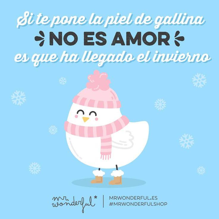 Si te pone la piel de gallina no es amor, es que ha llegado el invierno Mr Wonderful
