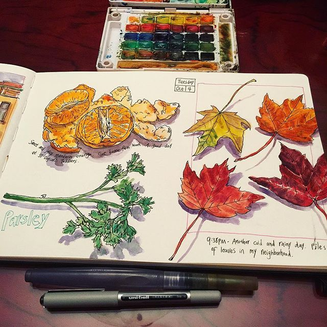 Today's visual journals. Peeled mandarin orange ready to eat, leaves I picked up today, and parsley. 😄 Sketching at the kitchen table is part of my everyday routine now. No more excuses of nothing to draw. 🎨📒 #caobeckysketch