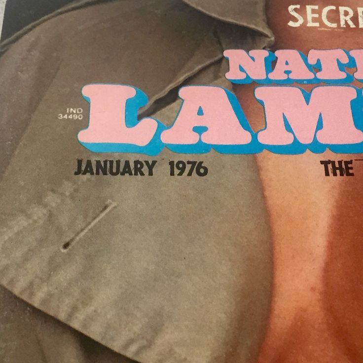 National Lampoon Magazine January Issue 1976 by vintagepoetic on Etsy