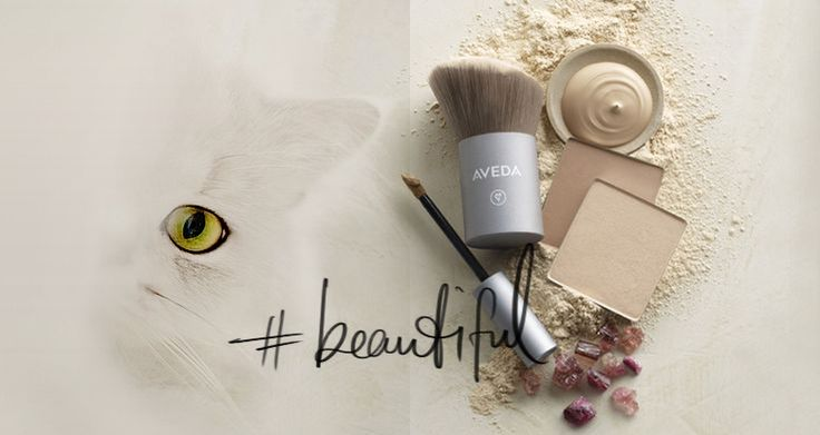 BEAUTY AND RESPECT: AVEDA