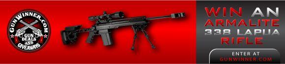 Sig Sauer P250 Full Size 9mm Pistol 4.7in Nitron 17 Round Interchangeable Grips and Calibers | Gunwinner