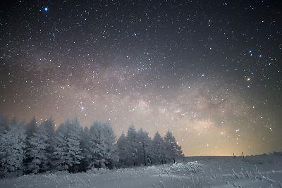 天の川の霧ヶ峰樹氷林