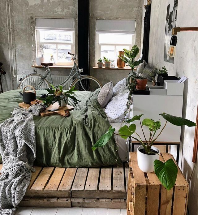 Plants In Moody Bedroom Cozy Room Apartment Decor Bedroom Design