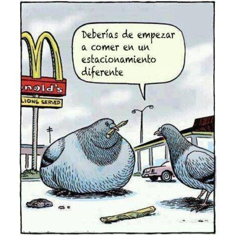 humor grafico comida sana - חיפוש ב-Google