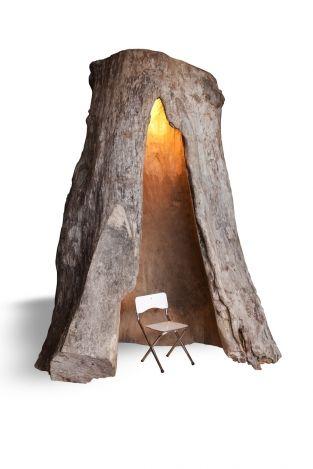 Innerspace    Een -one of a kind item-  deze holle plataan met verlichting.    In deze bijzondere ruimte kunnen 1 of 2 mensen verblijven.