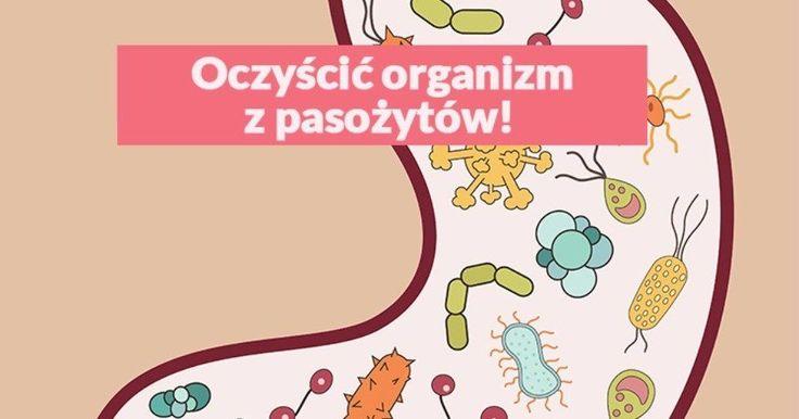 Po wakacjach warto oczyścić organizm i zadbać o zdrowie, pomoże nam to uniknąć wielu infekcji i wzmocni naszą odporność. Jeśli chcesz oczyścić organizm z pasożytów, toksyn, a dodatkowo pozbyć się ...
