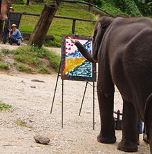 Elephant cognition - Wikipedia, the free encyclopedia