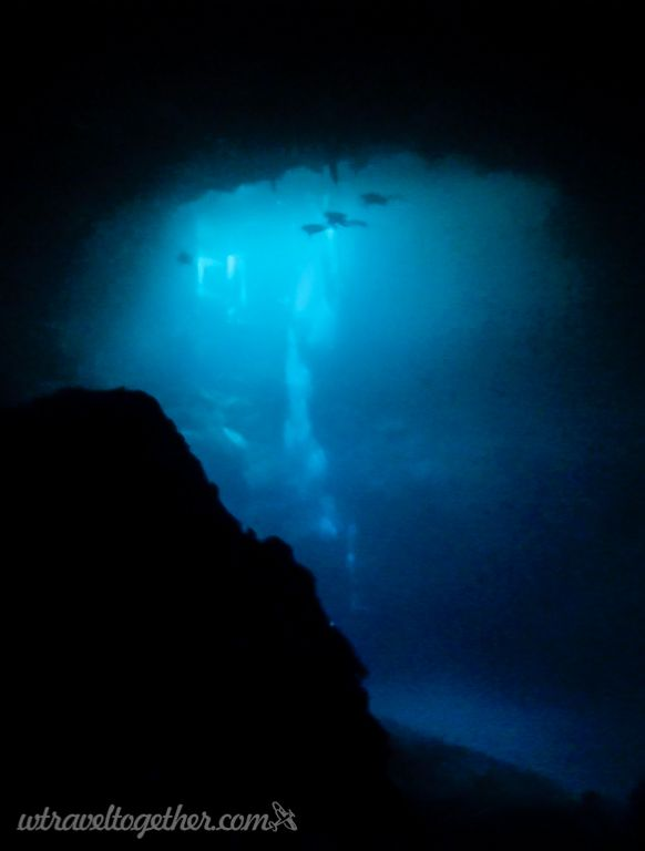 Diving in sinkholes - We Travel Together