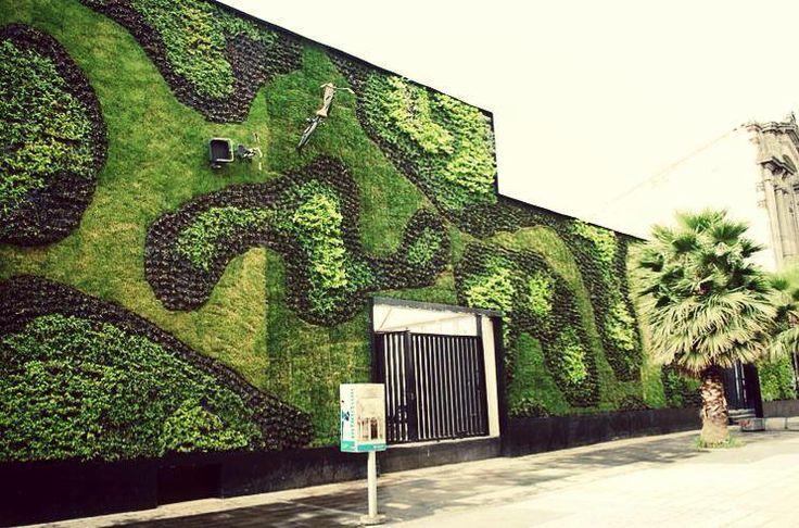Muro verde calle regina claustro de sor juana m xico d for Muros verdes en mexico