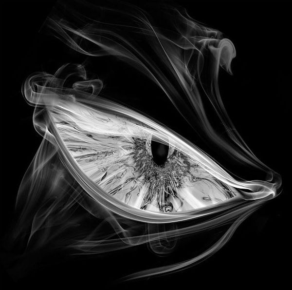 Ojo hecho de humoEye Contacts, Smoke Eye, Amazing Art, Art Photography, Mehmet Ozgur, Smoke Photography, Smoke Artworks, Smokey Eye, Smoke Art Eye Jpg 620 400