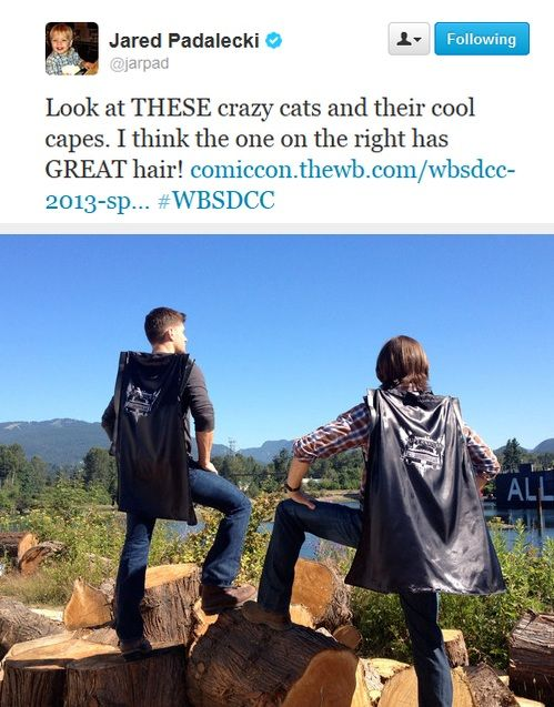 I can't believe I missed 2013 San Diego comic con. They had freaking capes for bags. CAPES.