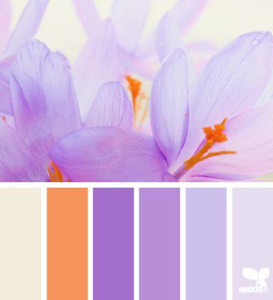 66 best paint color schemes images on pinterest