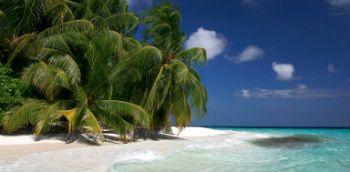 Visitar Punta Cana - Vacaciones en Punta Cana - Hoteles en Punta Cana