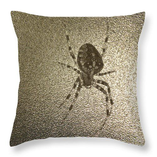 Golden Cross Spider Throw Pillow by Sverre Andreas Fekjan.  Our throw pillows…
