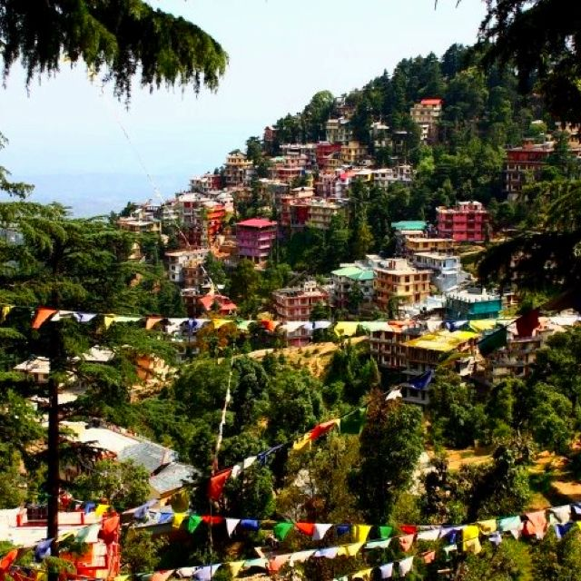 Dharamsala, Himachal Pradesh, India. peace. monks. merchants. hippies. Tibet. rain. cold. coolness