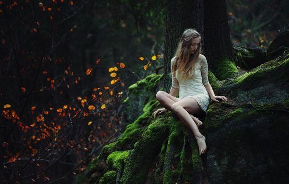 Обои картинки фото девушка, поза, лес