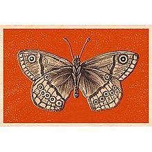 Een mooi afbeelding van een vlinder op hout