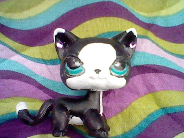 This is one of my shorthair customs. NAME: Whisker.  She is pretty cool... I recustomed her she is now the Midnight Angel!!!