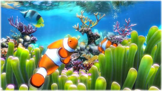 Sim Aquarium Free. Watch fish, live clams, and swaying coral in a colorful virtual aquarium on your screen.