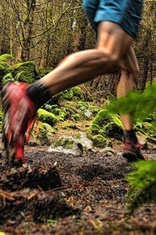 Preciosa imagen de trail