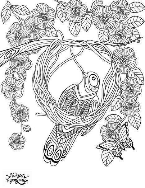 Bird Making A Nest From 52 Semaines Pour Me Donner Des Ailes Flower Butterfly Abstract Doodle Zentangle Coloring Pages Colouring Adult Detailed Advanced