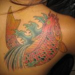 Koi fish tattoo on back shoulder done by Andy King-tattoo artist at TattooLicious located in Honolulu Hawaii.