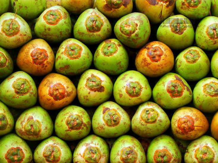 coco---nuts!!!!