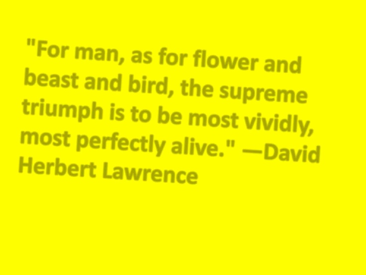 The life and times of david herbert lawrence