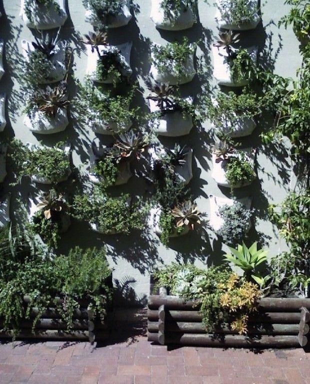 Easy Vertical Gardening Ideas For Beginners