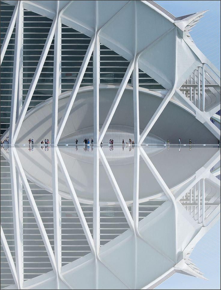 Santiago Calatrava, by rita vita finzi Structural Expressionism