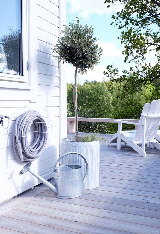 Grå vattenslang, uppstammat träd och vit soldäckstol.