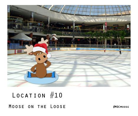 Even a travelling #MDCmoose needs to have some fun! You can have fun too by entering the contest to WIN