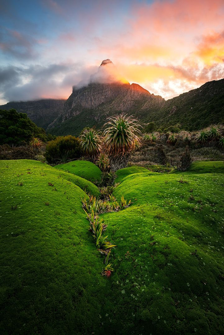 ~~South-West National Park, Tasmania Australia by Chris Wiewiora~~