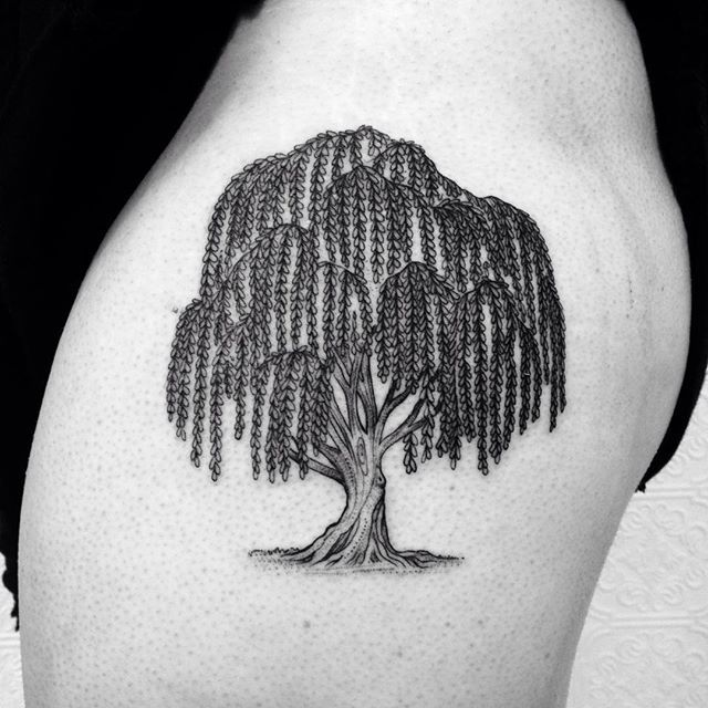 Weeping Willow Tree Black And White Tattoo 25+ best ideas ...
