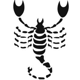 A Mulher de cada Signo do Zodíaco e Seus Segredos - A Mulher de Escorpião – 23.10 a 21.11