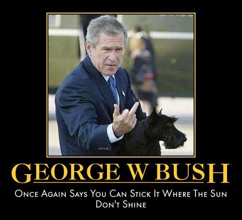 CONDUCT GRADE Bush Always stickin' it up where